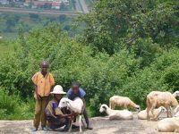 3世代 アフリカ旅行 アブジャ編
