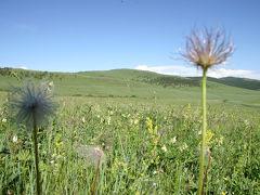 モンゴル大草原の旅 3・・旅いつまでも