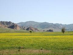 モンゴル大草原の旅 6・・旅いつまでも