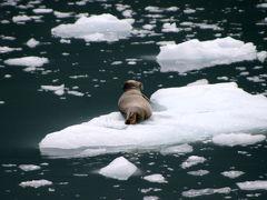 夏色・アラスカの旅 7・・旅いつまでも・・