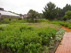 サン農園 ハーブガーデン