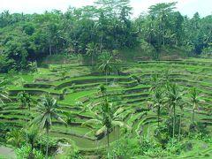 2006年インドネシア・バリ島旅行 4日目 ウブド ? -UBUD-