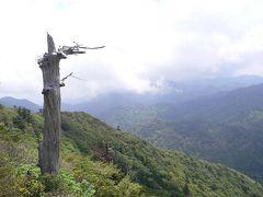 ■屋久島の旅②白谷雲水峡・太鼓岩