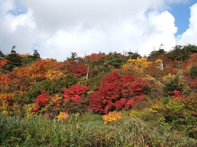 山形蔵王から秋田栗駒まで、休みが取れたので早めの<br />紅葉狩りにいってきました。<br />期待していた以上に、紅葉前線南下中です!!