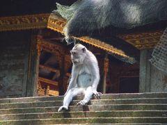 2006年インドネシア・バリ島旅行 5日目 ウブド ? & クタ ? -UBUD & KUTA-