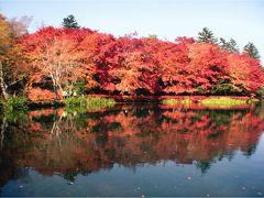ジャンボオーナーズ軽井沢 雲場池の紅葉