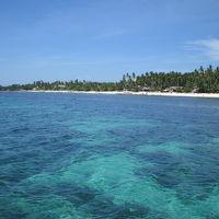 フィリピン セブからボホールへ、アロナビーチ6日間
