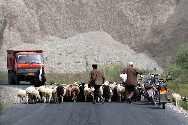 9月7日。<br />莎車滞在の2日目第3部は、霍什拉甫郷を出た後、最初に通過した「喀群郷(カーチュン村)」で、遅めの昼食。<br />羊の大群に出会しながらの引き上げは、最近のパターンになりつつある感じだ。<br /> <br />露わな大自然に身を置き感傷に浸ったのも束の間、車の速度と共に自分の時間も「現代」に戻ってしまうのだった。<br />帰ってくると、爺ぃの友人達による我々の歓迎会。そこでは、今日見て感じた純粋素直な気分から、呆気なくも現実へと引き戻されるのだった。<br /> <br />では、愚かな現代人の狂乱の様子(?)も含めてご覧戴きたく。<br /> <br />尚、画像前半にある戈壁の山々は、元画像でご覧戴くと、その迫力が充分に伝わります。