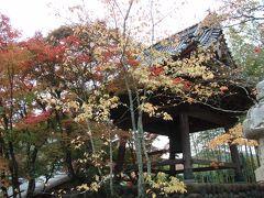 修善寺・大滝温泉の旅 1