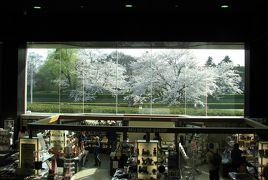 佐倉市散策(3)・・佐倉城址公園を訪ねて