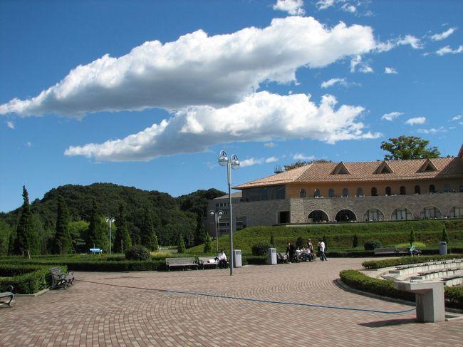 秋晴れに丁度学園祭がありキャンパスを訪ねたところ、今頃の大学のキャンパスって宮殿の様ですね、本当に抜けるような青空で、富士山も見えました。学園祭の揚げたこ焼きをたべて、若者の熱気を貰って元気になりました。