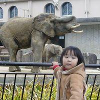 ☆★どたばた家族 動物園にやってきたよ♪★☆