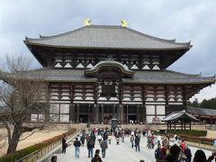 久し振りの奈良(奈良公園・東大寺周辺)散策 ? (2007年2月)