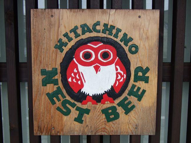 先日ミニビールフェスタで美味しいホワイトエールをいただいた時に、他のビールも飲んでみたいと思ったので、水戸の木内酒造まで足を運んでしまいました。<br /><br />今回はビール好きコミュ仲間のshioriさんと一緒の旅です♪