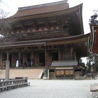 --【奈良】?吉野山~桜を待ちわびて~