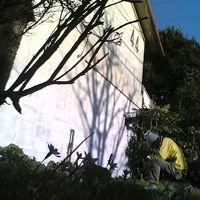 タイムスリップしたような不思議な集落、阿佐ヶ谷住宅