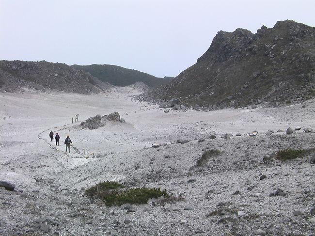 神々の物語が残る美しい島「神津島」<br />花の百名山でもある「天上山」に登る。<br />標高572mの天上山はほぼ島の中央に鎮座している。海上から遠めに見る島は天上山がほぼ面積を占めているように見える。<br />9人の山の仲間とのトレッキングは春の嵐に遭遇し、島での一日を余分に楽しむ事になるとは夢にも思わない旅となった。<br />3/23、竹芝桟橋を21時55分に出港。<br /><br />
