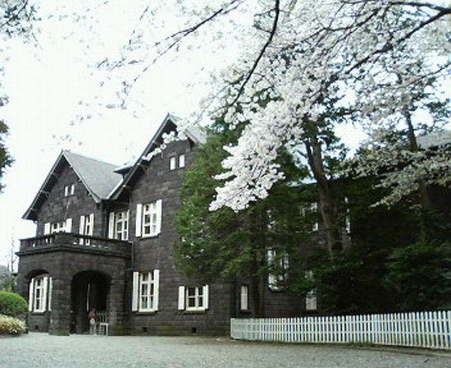 週末なのになぜか、ダンナも私も早起きしてしまった。<br />桜が私たちを呼んでいたに違いない!<br />http://cembalonko.exblog.jp/m2007-04-01/#5024577<br />