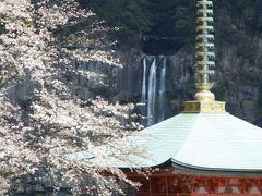 熊野三山巡り&吉野山桜巡り。その2:勝浦温泉&熊野三山編