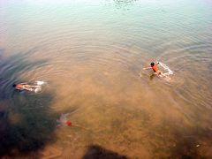 シーパンドン4: 「無音・無電生活」 究極のコン島