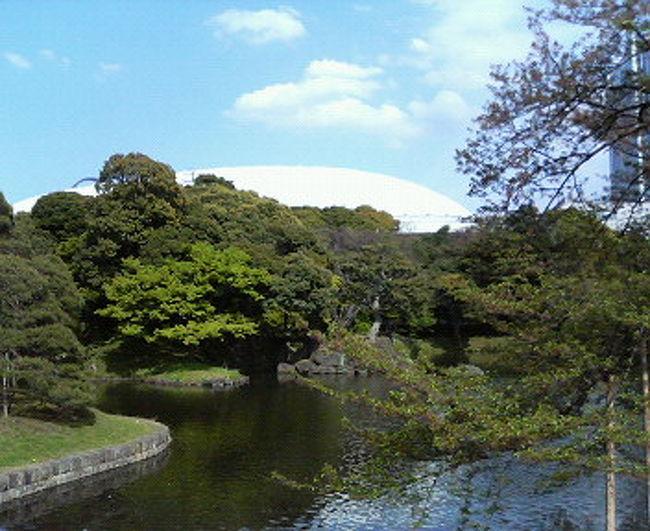 ご存知、水戸光圀候が造園した、日本3大名園のひとつ。<br />桜吹雪が舞う中、新緑を満喫しました。<br /><br />先日行った六義園の広さが8ha、<br />後楽園は7haですが、<br />後楽園の方がより広く感じました。<br />起伏に富んだ地形だからでしょうか。<br />丘あり、沢あり、名刹あり。<br />庭園は大人の遊園地って感じがします。よく歩いたなー。<br /><br />ひとこと。<br />白い東京ドームと高層ビル、とっても邪魔です!(怒)
