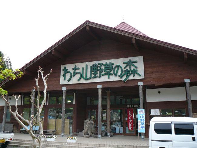 京丹波町は、京都府のほぼ中央部にあたる丹波高原の由良川水系上流部に位置し、古くから、都と丹後・山陰地方を結ぶ交通の要衝として栄えました。現在でも京都縦貫自動車道やJR山陰本線をはじめ、国道9号、27号、173号などが交わり、交通環境に恵まれた地域です。<br />ドライブ散策順路<br /> →京都縦貫自動車道丹波IC→琴滝、玉雲寺→九手神社→質志鍾乳洞公園→質美八幡宮→大福光寺→昼食・休憩→わち山野草の森→長源寺(がん封じ寺)→祥雲寺・天足堂(ぼけ封じ寺)→七色の木→京都縦貫自動車道沓掛IC<br /><br />わち山野草の森<br /> 由良川沿いに広がる癒しの自然活用型公園。12haの園内には、約900種の山野草や花木などが息づき、四季折々に美しい花・風景を満喫することができ、心身ともにリフレッシュ。<br /> 素朴な草花や樹木を見ながら楽しく散策した後は、周りの景色も楽しみながら野外バーベキューに舌鼓。<br /> 年間10回を超える山野草展をはじめ、押し花クラフト、木工クラフト、苔玉・寄せ植えなどの体験メニューも豊富。シイタケ狩り・クリ拾い・ハーブの摘み取りなどもご用意。<br /> 「わち山野草の森」で、四季に咲く草花の自然の姿をたっぷりご堪 能ください。