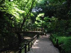 目黒通り 柿の木坂陸橋~玉川神社 等々力渓谷~多摩川散歩