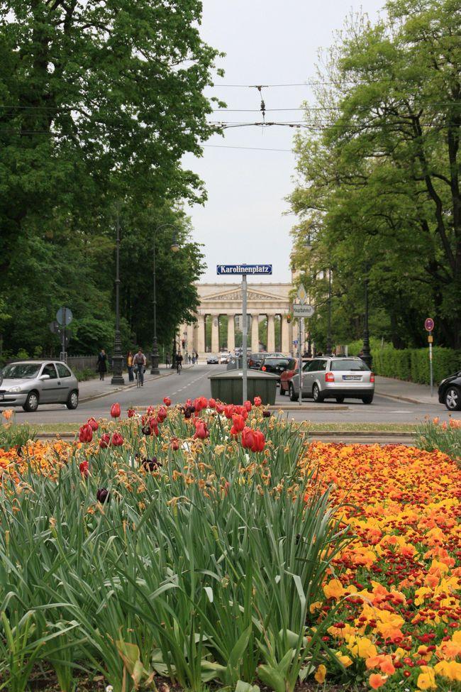 ↑はバイエルン王どなたかの意向だったかと存じますが、まさに今までの私にも当てはまりまして。<br />数回ドイツには来ているものの、「都会生活は、日本に居る時だけで十二分だ!!」という思いのもと、嬉しげに訪れるは田舎ばかり。<br />100万都市ともなると、乗り換えなどで通過する機会はあるもののなかなか本腰入れては訪れなかったのですが「人口100万人の村」というミュンヘンの愛称も知り、今回訪問に至りました。<br /><br />大仰な前フリになりましたが、見所の多い都市。<br />2泊2日の日程で初訪問でしたので、有名どころの中から見たいところをピックアップして回っただけで時間が無くなってしまいました。<br /><br />【今回の旅程】<br />ドイツ<br />  フライジング(ヴァイエンシュテファン) → ★ミュンヘン →<br />  レーゲンスブルク(ヴェルテンブルク) → ウルム →<br /><br />フランス<br />  プジョー博物館 → アルザス →<br /><br />スイス<br />  シュタイン アム ライン →<br /><br />フィンランド<br />  タンペレ → イッタラ → ヘルシンキ<br />