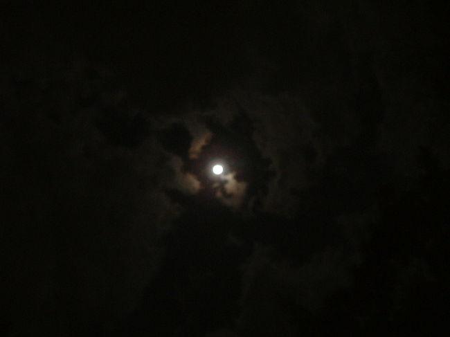 伊勢神宮参りのついでに、<br />桑名に寄り道。<br />六華苑は、非常に好きな洋館の一つです♪<br />Topの写真は、月夜見神宮から見た月夜。