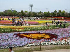 2007春、なばなの里(1):4月10日(1):チューリップ畑