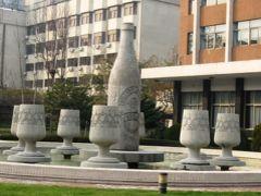 2006暮、中国旅行記11(6):12月9日(1)青島・2箇所の市場見学