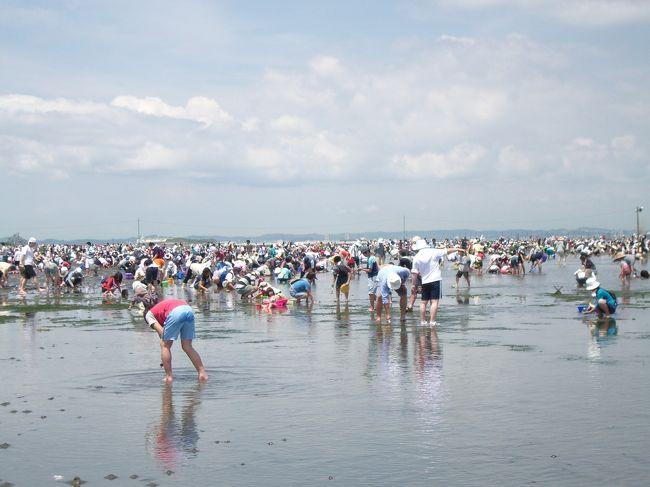 無性に潮干狩りをしたくなり2007年6月2日〜3日で、友人達と房総半島へ行ってきました。<br /><br />今回の旅の目的は<br />?あさり・蛤をいっぱいGETする<br />?貝以外の海鮮も満喫する!!<br />?久しぶりに友人達と大騒ぎする<br /><br />今年2回目の房総半島。目的の潮干狩りにLet&#39;s GO!!久しぶりの友人達との旅行という事もあり、私も妻も非常に楽しく過ごせた2日間でした。(私は飲みすぎて、夜はつぶれてしまいましたが…)<br /><br />★旅行形態:個人旅行<br />★ペンション&コンドミニアム:パームヴィレッジ<br />★お世話になったweb<br />○富津海岸潮干狩り<br />http://jf-futtsu.com/<br />○パームヴィレッジ<br />http://www.aco.co.jp/palm/<br />○里美の湯<br />http://www.satominoyu.com/<br />○館山ファミリーパーク<br />http://www.enjoyboso.com/famirry/<br />○道の駅とみうら<br />http://www.ktr.mlit.go.jp/kyoku/road/eki/station/chiba_tomiura/index.html
