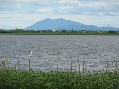 印西市散策(1)・・印旛沼サイクリングロードを訪ねて(北印旛沼編)