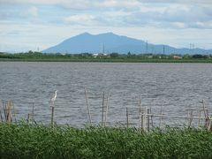 印西市散策(1)・・印旛沼サイクリングロードを訪ねて(北印旛沼編)。