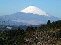 今年初の富士山