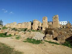 チュニジア。ドライブ紀行。その2:カルタゴ遺跡編