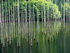 2007 木曾へー7 王滝村 滝越エリア 上 自然湖 森林鉄道