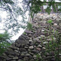 創建時の多聞櫓が残る「亀山城」と 肉の水炊き「むかい」