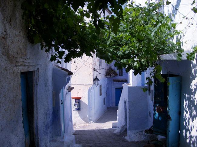 モロッコに行くなら、どうしても外したくなかったシャウエン。<br />のんびりゆったり、とても美しい町でした。