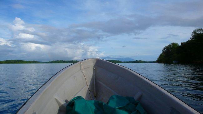 ギゾの写真です。<br /><br />ホームページ http://www.namako.to/