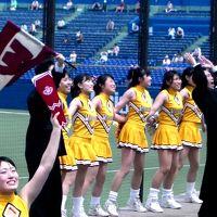 ひとり旅 ?9 想い出さがしの旅<東京六大学野球観戦>神宮球場