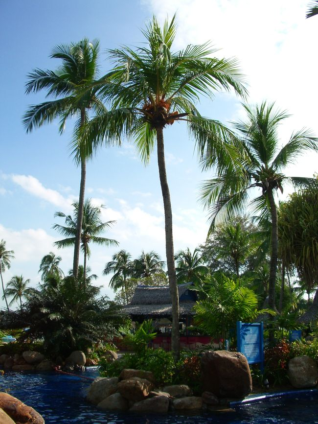 【出発】<br />8月22日から家族でマレーシアのペナン島に行ってきた。<br />出発は朝早い便だったため、前日から成田のホテルに宿泊した。<br /><br />成田空港はいつも早朝から混雑している。<br />朝7時には、あちこちのカウンターに長い列ができていた。<br />航空会社のカウンターでチェックインを済ませたら、次は出国審査。<br />我が家は一昨年、やはり朝の便でシンガポールに行った時、<br />出国審査の行列に1時間以上並ぶ羽目に陥り、とうとう搭乗機の最終案内に間に合わなかった、<br />という苦い経験を持つ。<br />「今回は早めに、早めに」<br />と、みんなで合言葉のように唱えながら、早々に出国手続きに進んだ。<br /><br />今回の出国審査は、恐れていたほどの混雑ではなかった。<br />思えば、シンガポールの時は第一ターミナルだった。<br />今回は第二。<br />その違い?などと考えながら並んでいたら、新たに二人ほど係員が出勤してきて、<br />二ヶ所カウンターが増えた。<br />行列の人々がドワワッ・・・と新しいカウンターにスライドする。<br />時計を見たら、8時半。<br />なるほど、役所は8時半出勤。<br />じゃ、その前にカウンターにいた職員はいわゆる早番の職員だったのか?<br />「出国審査のカウンターは8時半に増える。」<br />おぼえておこうっと。<br /><br />日本とペナンには直行便がないため、どこかで乗り継ぎをしなければならない。<br />乗り継ぎは、クアラルンプール、香港、シンガポールのいずれかの選択肢があったが、<br />我が家は香港乗継ぎを選んだ。<br />香港まで約4時間半、香港からペナンまで約3時間半。<br />ほぼ中間地点で一休みできていいんじゃないの、という感じだ。<br />キャセイパシフィックに乗るのは初めてである。<br />サービスに定評のある評判のいい航空会社なので、期待していた。<br /><br />シート(もちろんエコノミー)は、わりと広々としている。<br />昨年の大韓航空も広いと感じたが、キャセイも同じくらいかもしれない。<br />機内食もけっこう美味しかった。<br />ひとつだけ困ったのは、アイスクリームだ。<br />機内食の配膳と同時に、大きなチョコクランチのアイスクリームをくれるのだが、<br />早く食べないと溶けちゃうぅ・・・・・と、もらった側は大慌てとなる。<br />実際はカチカチに冷たーく凍っているアイスなので、そんなに急がなくても大丈夫だったが・・・・。<br /><br />香港からペナンへの便は、日本人客の姿はめっきり少なくなる。<br />乗客の殆どは中国人のようだ。<br />同じキャセイでも、成田-香港間のフライトとは機内の雰囲気がだいぶ違う。<br />シーンと静まり返っていた成田-香港便とは打って変わって、<br />ペナン行きの機内はとても賑やか。<br />みんなが大きな声でお喋りを楽しんでいる。<br />ベルト着用サインが消えたとたん、通路でウォーキングを始めるグループまで出てきた。<br />エコノミー症候群防止のためだろうか?<br /><br />そして、機内食。<br />成田からの便とは違うメニューだが、こちにもなかなか美味しい。<br />そしてまた、チョコクランチ。<br />結局このチョコクランチは、日本-ペナン往復の合計4回の機内食のうち、3回出てきた。<br />最後のチョコランチを食べながら、横にいる夫と、<br />「当分チョコクランチのアイスは見たくもないね・・・・」<br />と、話した。<br /><br /><br /><br />【交通事情】 <br /><br />マレーシアは、自動車が多い。 <br />ペナン島にサイパンやグァムのイメージを抱いていた私は、あまりのクルマの多さに驚いた。 <br />マレーシアには、歩行者優先という考え方は基本的にないそうだ。 <br />信号機はそれなりにあるものの、飽くまでもクルマのための信号。 <br />歩行者のための信号機や横断歩道は、たまに見かける程度だった。 <br />しかも歩行者信号の中には、点灯しておらず機能していないものもある。 <br /><br />私たちがペナンで最初にぶち当たった困難は、「道路が横断できない!」というものだった。 <br />信号機や横断歩道がない以上、クルマが途切れた瞬間に全力で走って渡る、というのが横断の基本であるということは初日におぼえた。 <br />しかし、シロウトの私たちにはそのタイミングがなかなかつかめないのだ。 