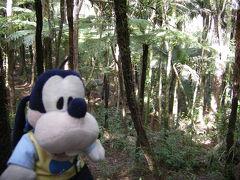 グーちゃん、ニュージーランドへ行く!(ワイタケレ・トレッキング編)
