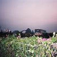 2005愛地球博といらこ岬