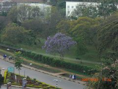 ケニアでfuraha!!!ーマサイ・マラ国立保護区へー