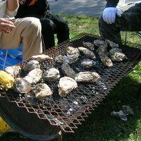 2007厚岸の牡蠣まつり♪