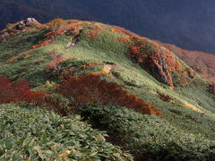 錦秋の山/谷川岳