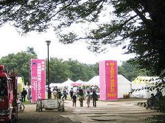 Japan  つかのまの日本を楽しんで 三鷹国際交流フェスティバルに参加しました