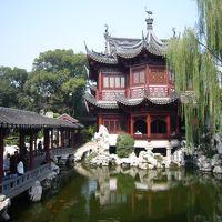 本場の上海蟹を食べに行こう2