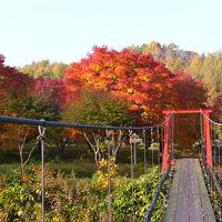 紅葉真っ盛り、八雲 温泉旅館 銀婚湯の旅 PART2